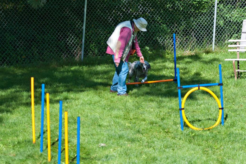 Name:  Grace coming over the hurdle 8-19-19.jpg Views: 402 Size:  164.1 KB