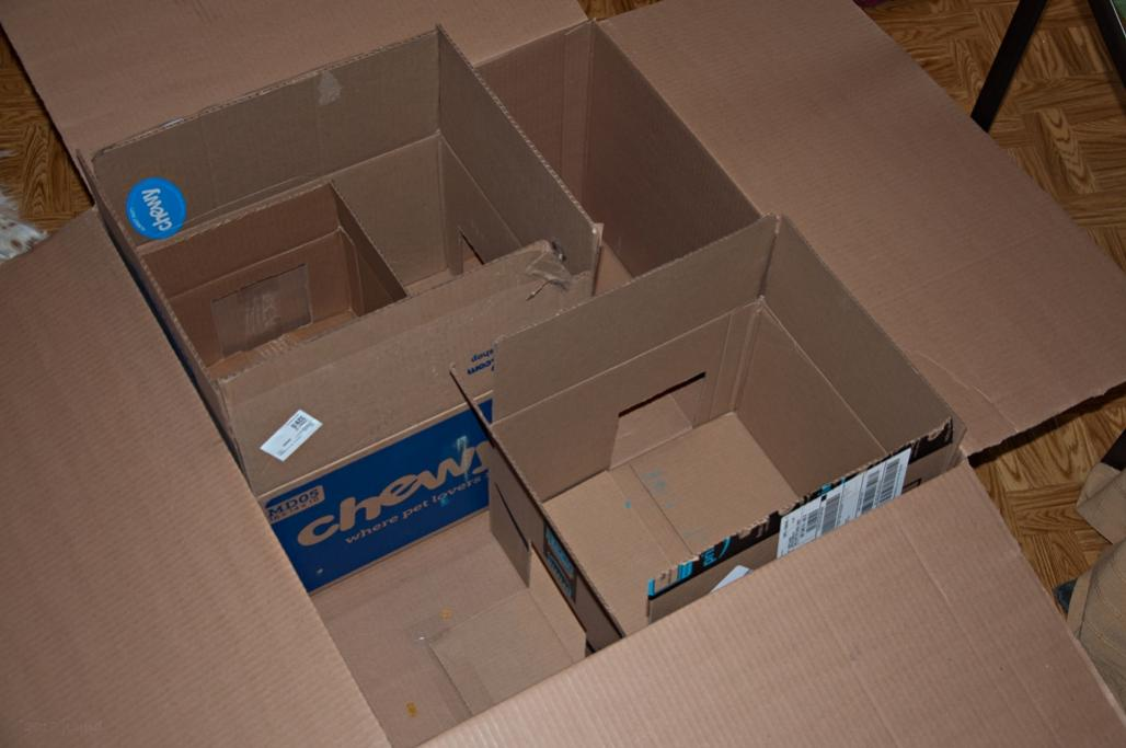 Name:  JDs cat maze 3-11-18 B.jpg Views: 339 Size:  61.0 KB