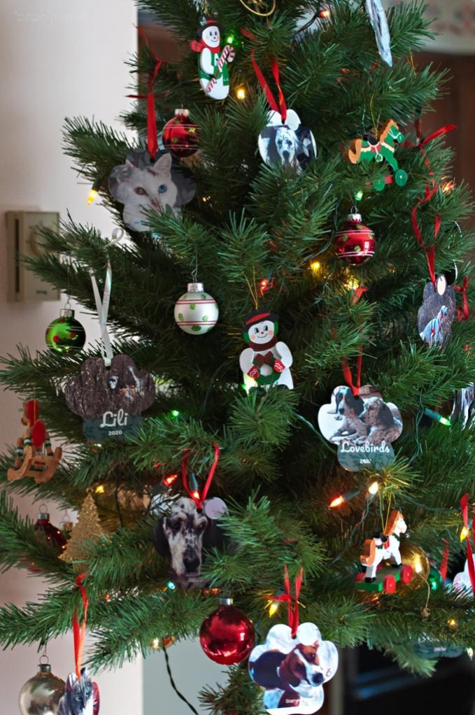 Name:  The 2020 Christmas tree 12-14-20 D.jpg Views: 52 Size:  129.3 KB