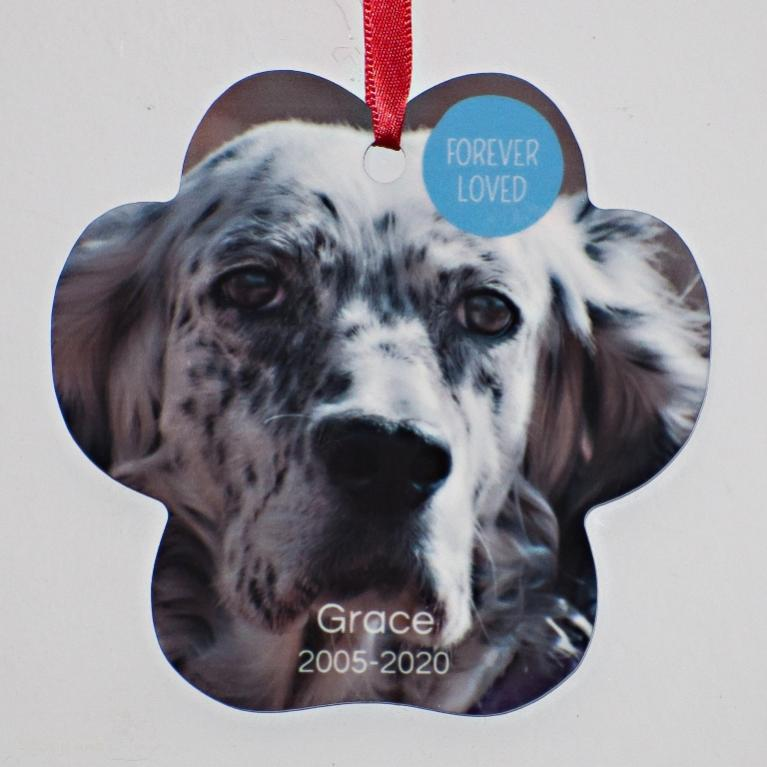 Name:  Grace 2005-2020.jpg Views: 52 Size:  53.5 KB