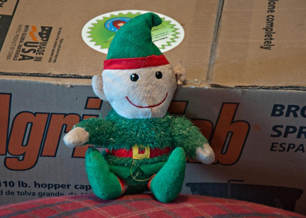 Name:  Lilis buddy, Alf the Elf 1-22-19.jpg