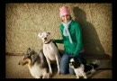 Pets.ca Tribute video by klmccallum