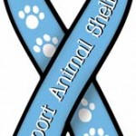 Support Animal Shelters Ribbon Magnet