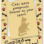 Spoiled Rotten Cat Picture Frame Magnet