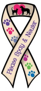 Spay and Neuter Ribbon Magnet