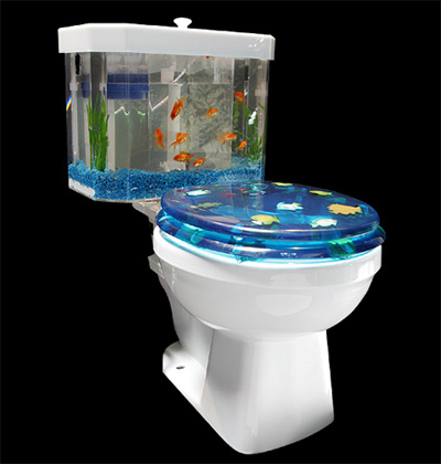 Turn your toilet into an aquarium